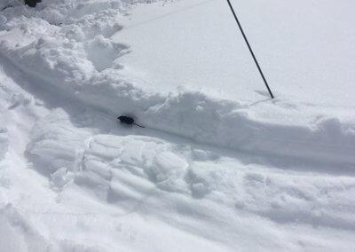Skiweltcup_29.2.20_32